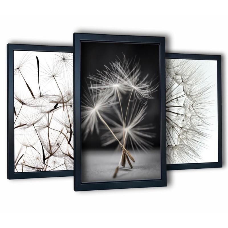 3 obrazy w ramach dmuchawce 99x43 cm