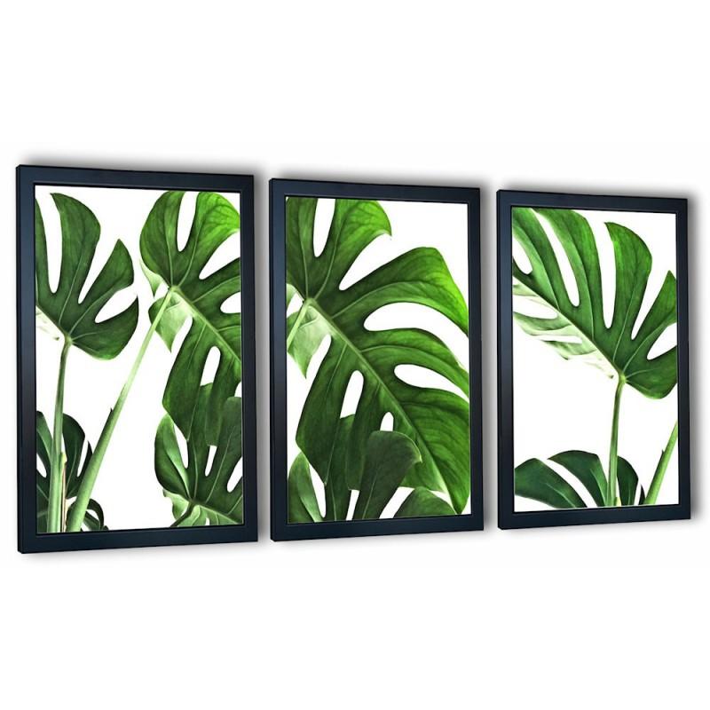 3 obrazy w ramach liście monstera 99x43 cm