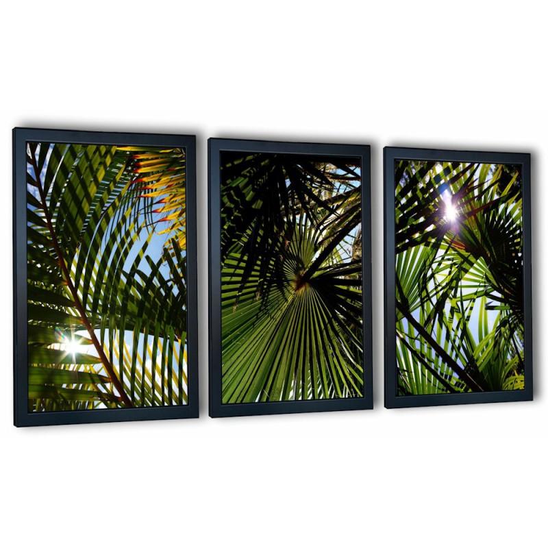 3 obrazy w ramach liście palmowe 99x43 cm