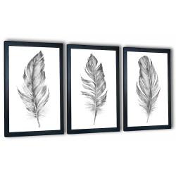 3 obrazy w ramach szare piórka 99x43 cm