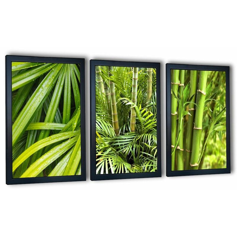 3 obrazy w ramach zielone bambusy 99x43 cm